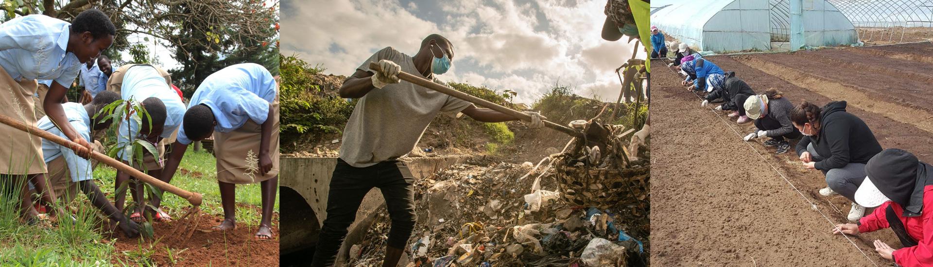 Día Mundial del Medio Ambiente: por un mundo sostenible y reconectado