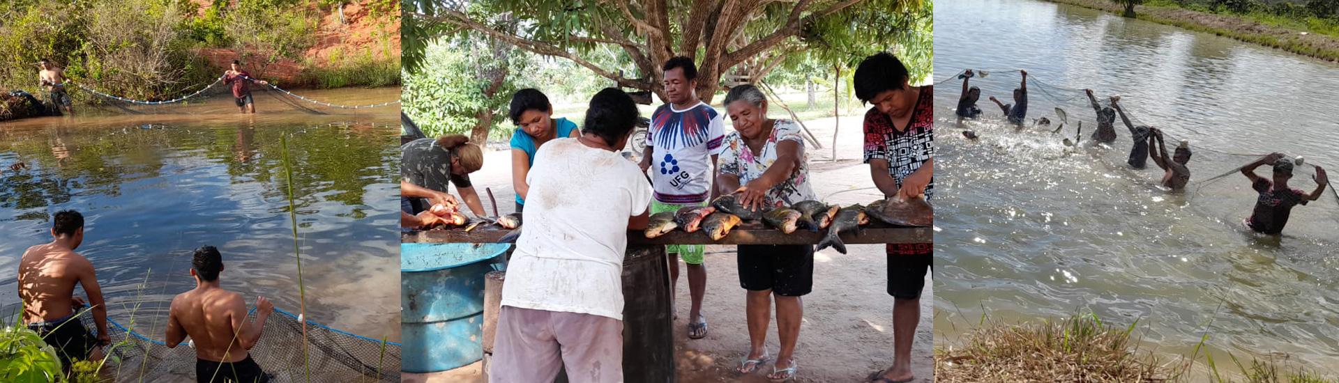 Un proyecto de piscicultura proporciona desarrollo a una de las misiones salesianas indígenas con los bororo en Brasil